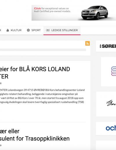 Bedriftsportalen Svenska Konceptutveckling AB Hemsida 2019