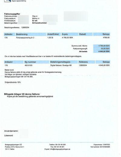 Bolagsupplysningen Digital faktura i Sverige AB