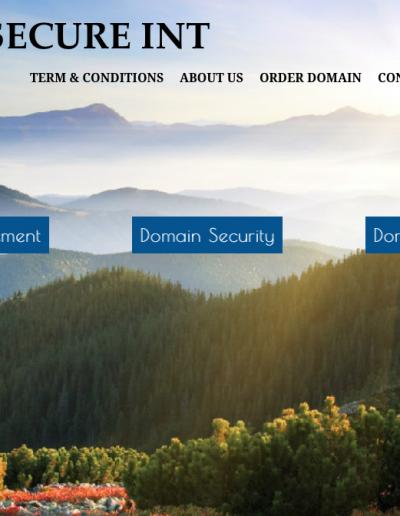 Domain Secure Int Domain Secure Int Hemsida - Domain Secure Int 2014